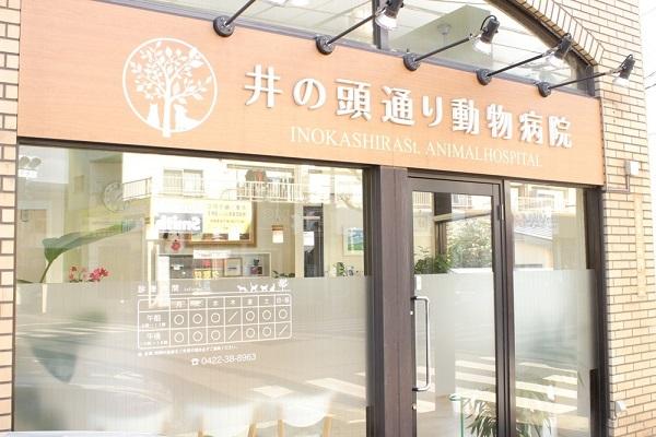 ブランケットキャッツ ロケ地 藤村動物病院 撮影場所.jpg